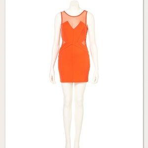 TopShop Dress Mesh Structured Bodycon Dress